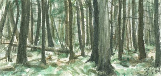 Undergrowth - Watercolor